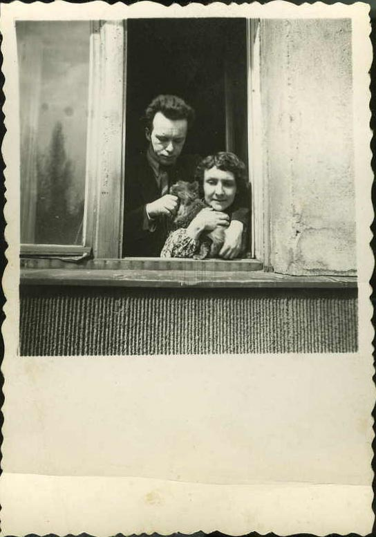 Z kotką, maj 1954